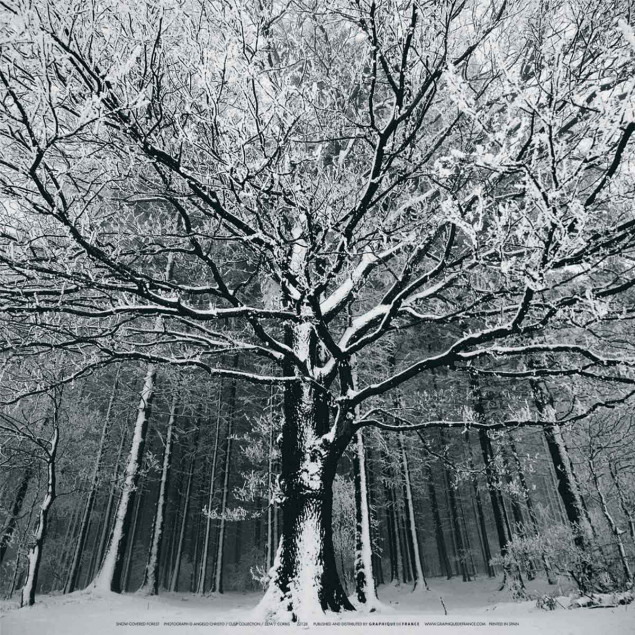 Fort sous la neige angelo christo